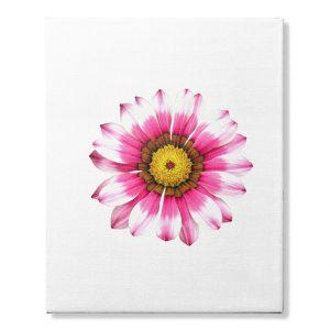 Summer Pink Flower Canvas Art Print